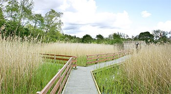 walton-lake-boardwalk-and-hide.jpg